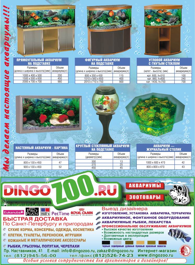 dingozoo modul big